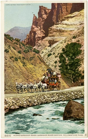 POSTCARDS-YELLOWSTONE NATIONAL PARK-STAGE COACHES