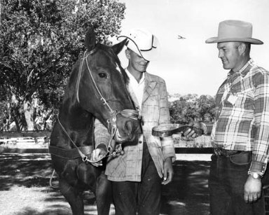Wyoming State Hat